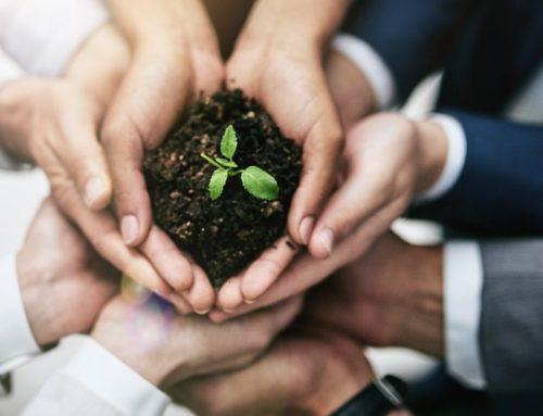 Nurturing Leads Can Treble Your Sales Conversion Ratio